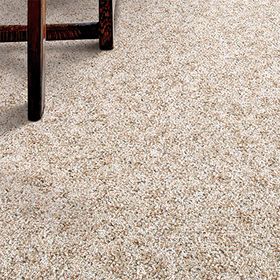 Needlepunch Carpet