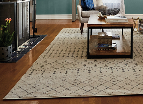 Rugs – The Home Depot