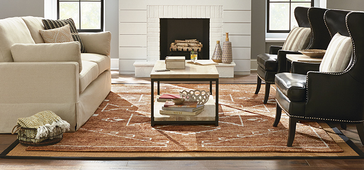 Rugs the home depot - Small living room rug ...