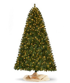 7 to 75 feet - Rustic Christmas Tree Decorations For Sale