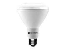 Recessed Light Bulbs