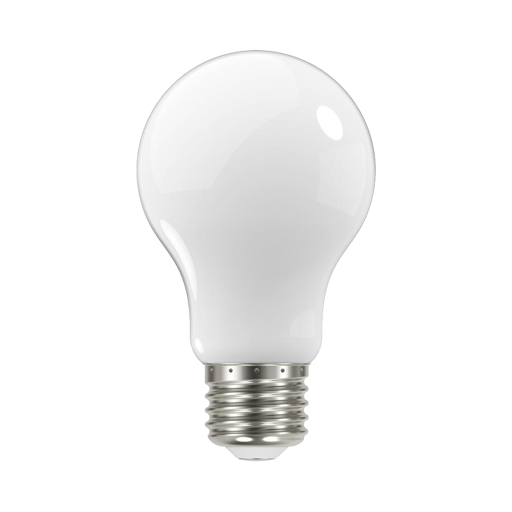 Elegant Standard Light Bulbs