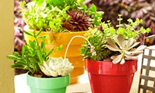 Outdoor planters garden pots at the home depot learn about pots for container gardening workwithnaturefo
