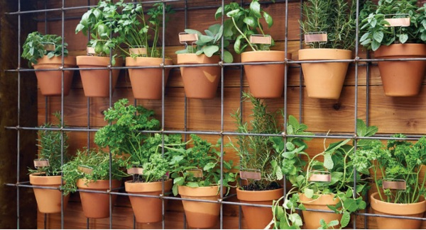 Make A Planter Wall