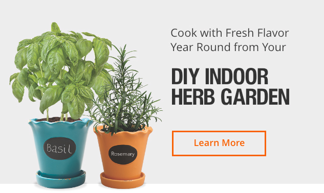 Grow Your Own Food Herbs