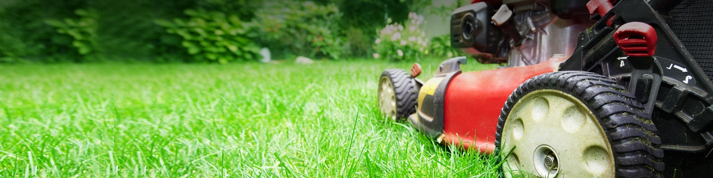 Free Pickup In 2 Hours. Get your lawn cut and complete in one afternoon