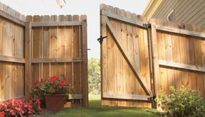 Home depot privacy fence pictures.
