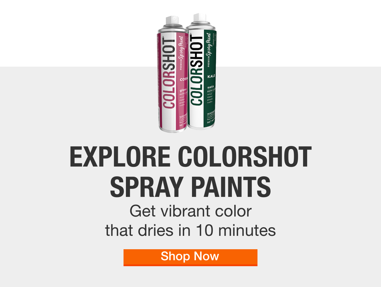 Spray Paint The Home Depot