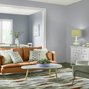Delightful Living Room Paint Colors