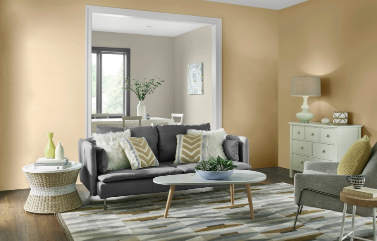 Living room paint colors the home depot - Painting options for a living room ...