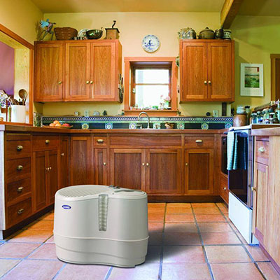 Select the right humidifiers and dehumidifiers for your for Small room humidifier