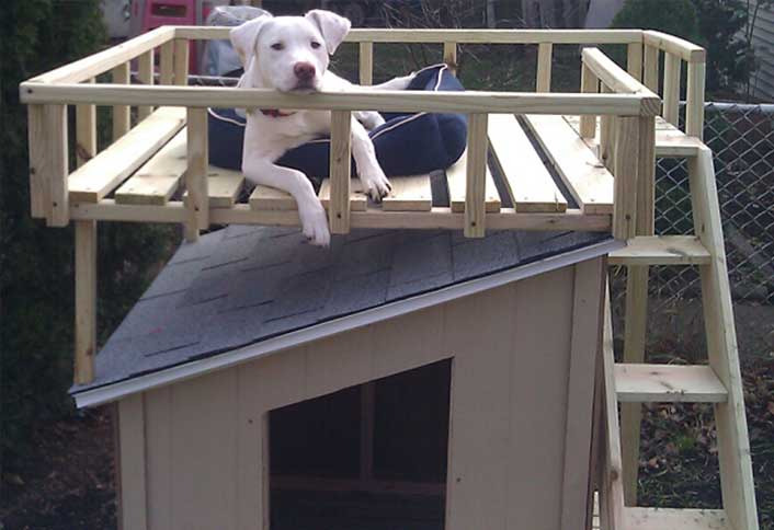 How to build a dog house with sun deck at the home depot dog house with sun deck malvernweather Image collections