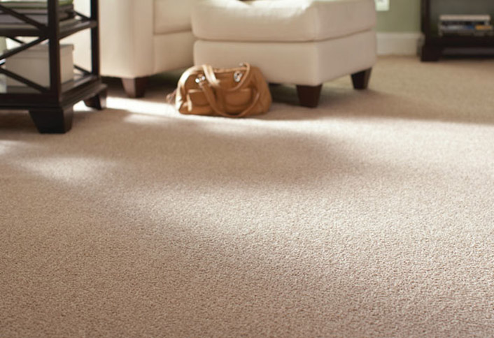 A Carpet Brings A Splash Of Personality Into Any Room While Improving  Comfort. With Multiple Types Of Carpet, This Guide Will Help You Determine  Which Best ...