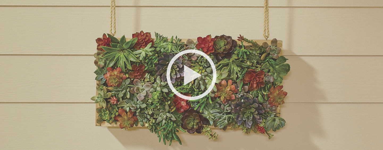 Vertical Succulent Garden Project Guide