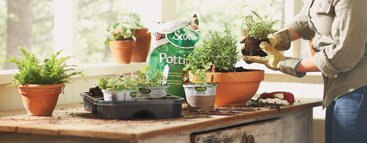 How To Make Your Own Indoor Herb Garden