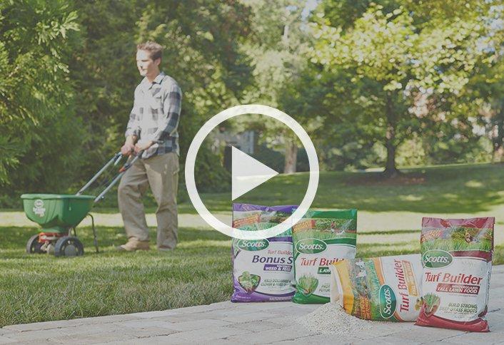 Buy Lawn Fertilizer