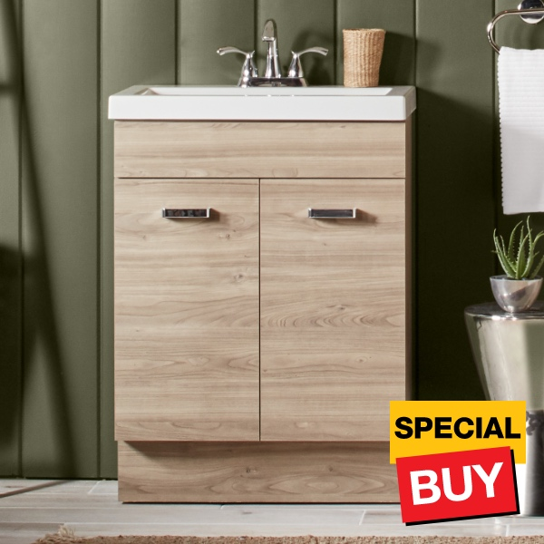 Astonishing Special Values Bathroom Vanities Bath The Home Depot Interior Design Ideas Gentotryabchikinfo
