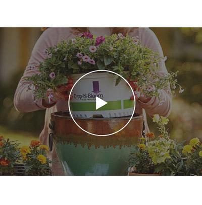 Planters Video