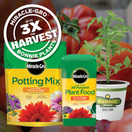 3X The Harvest with Potting Mix, Plant Food and Bonnie Plants