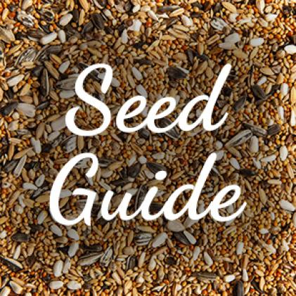 seed guide, squirrel resistant seed feeders