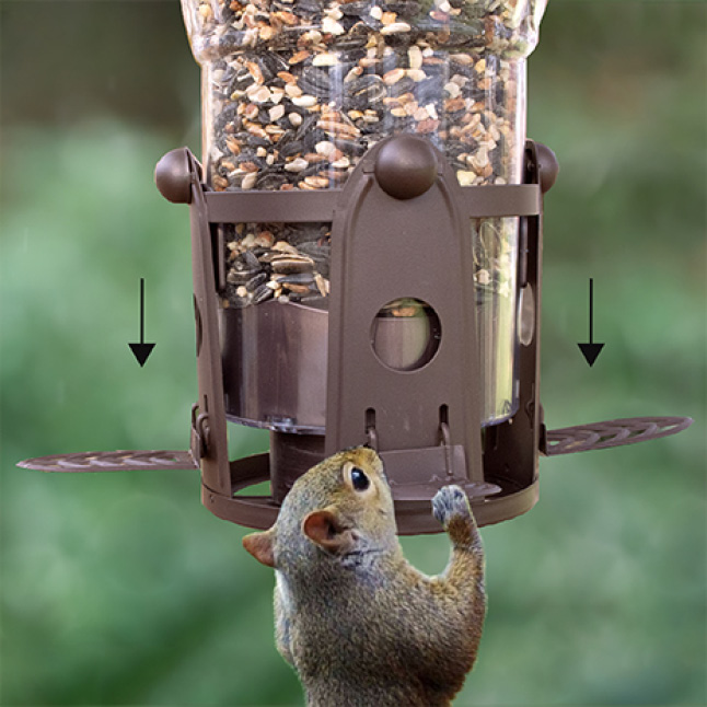 weight-activated perches, squirrel resistant seed feeders