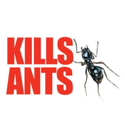 Kills ants