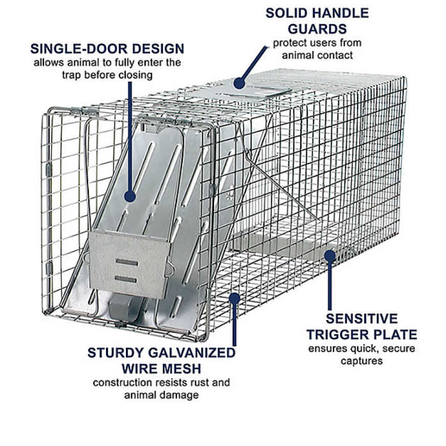 Sturdy 1-Door Traps