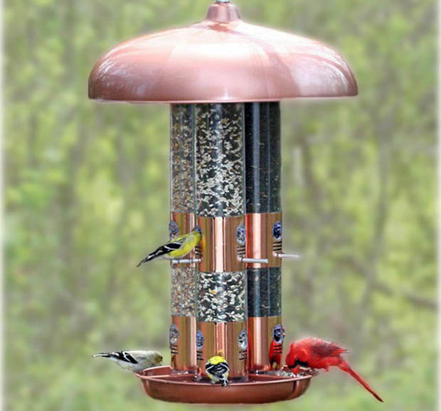 Detailed Image of birdfeeder
