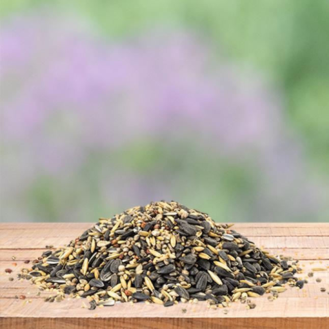 large seed capacity, squirrel resistant seed feeders