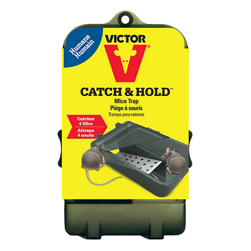 The Catch and Hold Mouse Trap