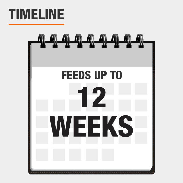 Feeds up to 12 weeks