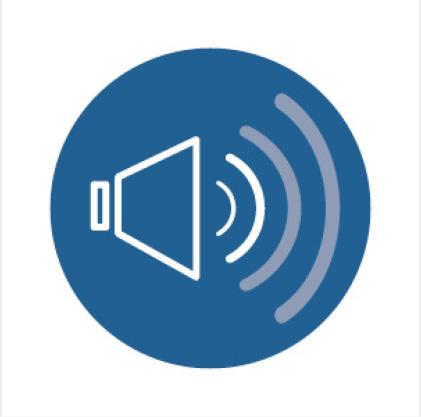 Standard Sound Icon