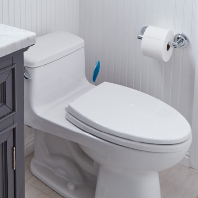 Disinfect, eliminate odors, and get your toilet squeaky clean with Clorox Toilet Bowl Cleaner with Bleach.