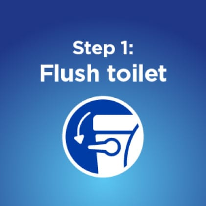 How to disinfect your toilet. Flush toilet before cleaning.