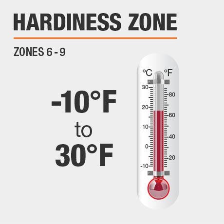 Hardiness Zone