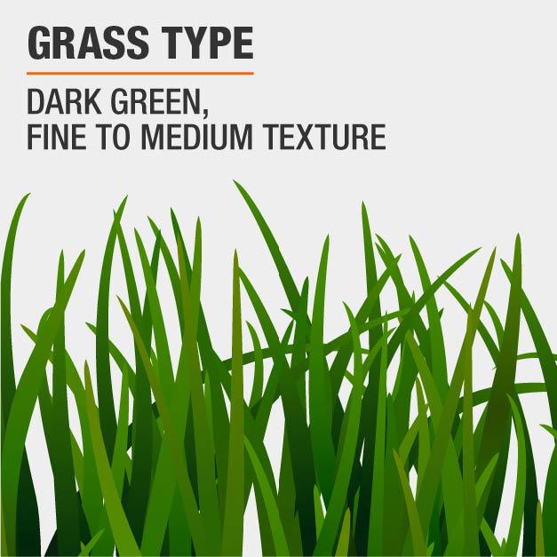 Vigoro 7 lb  Tall Fescue Grass Seed Blend