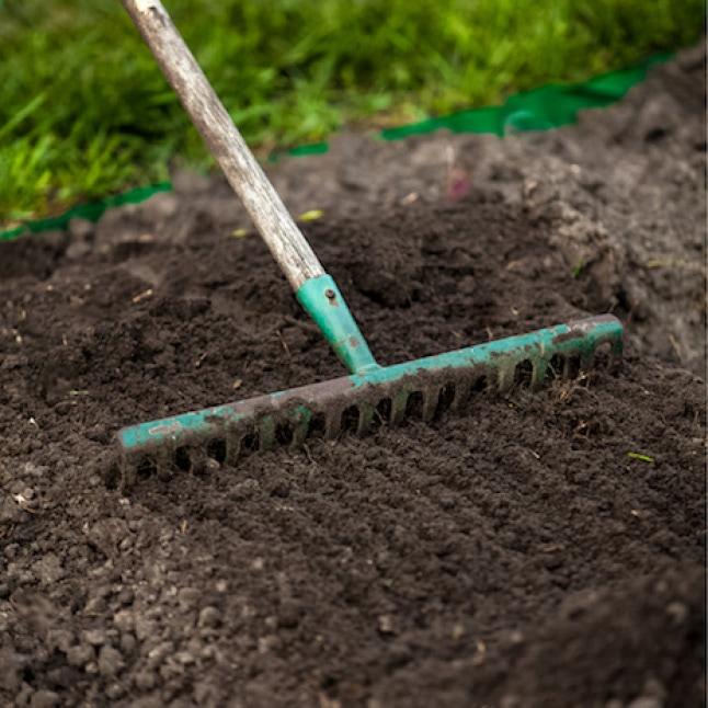 Rake raking the soil