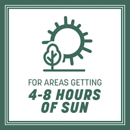 For areas that get 4-6 hours of sun daily