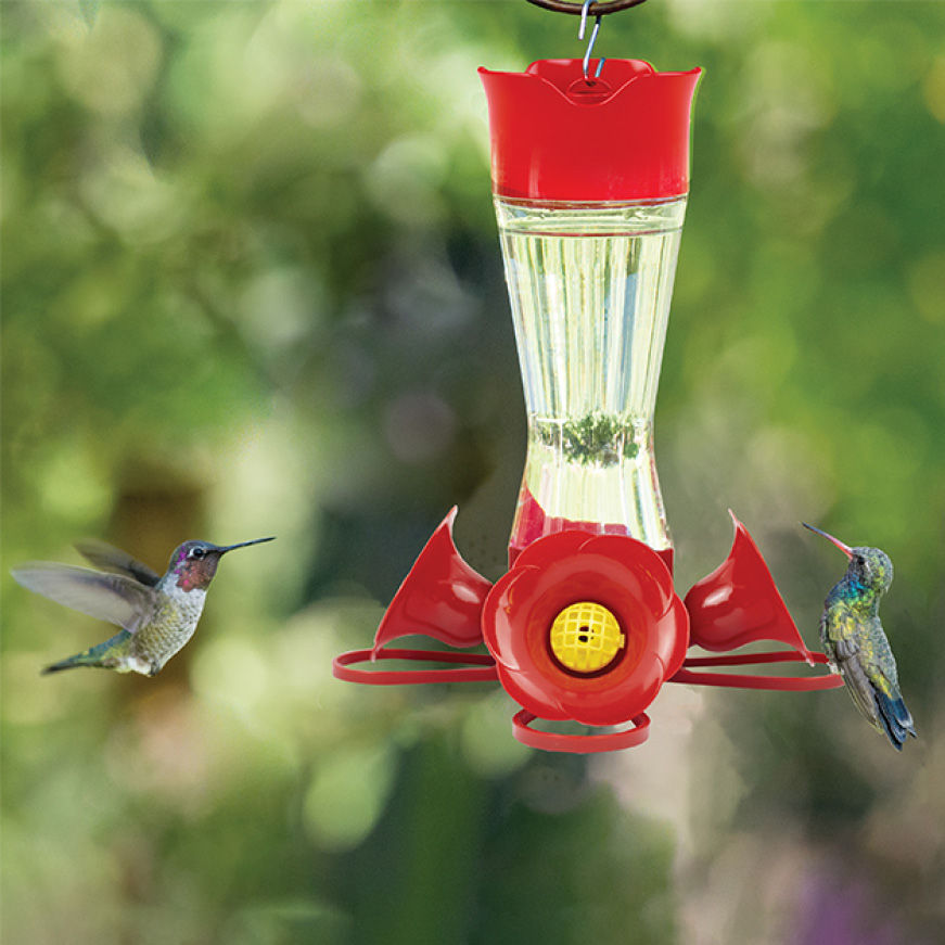 room for multiple birds, glass hummingbird feeders