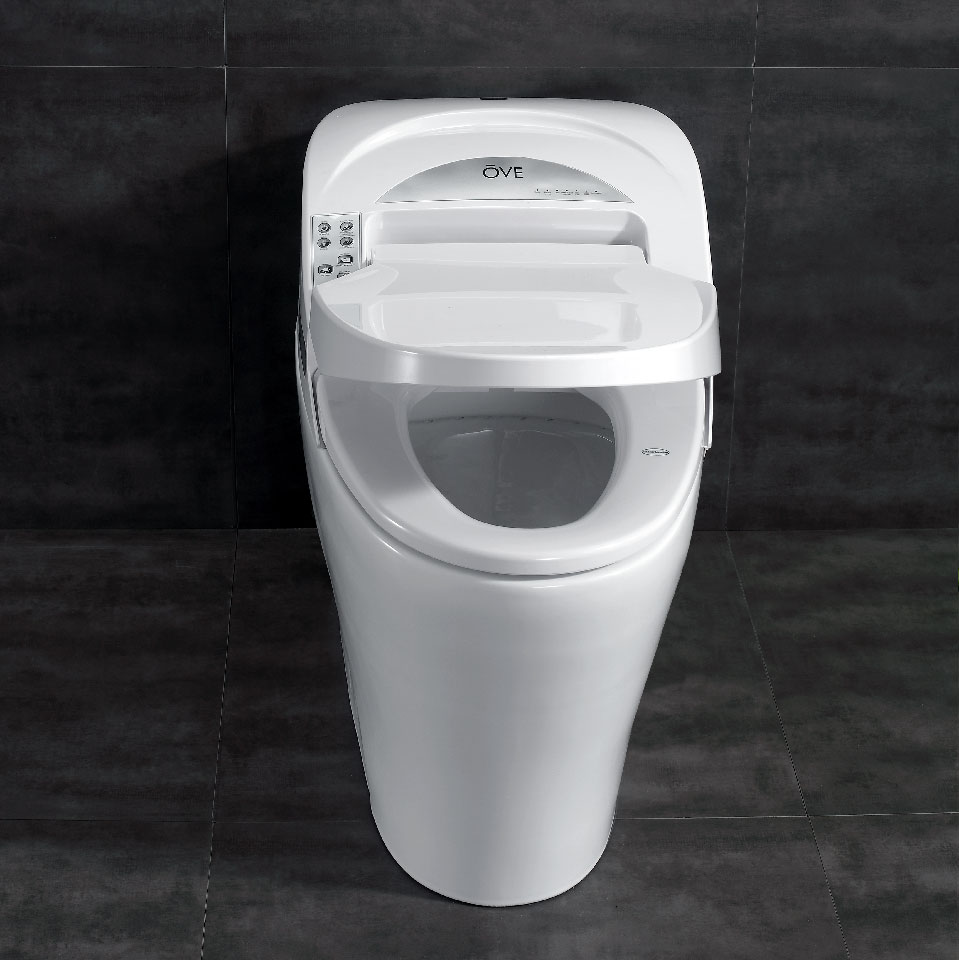Ove Decors Smart 1 Piece 1 28 Gpf Single Flush Elongated