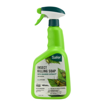 Insect Killing Soap