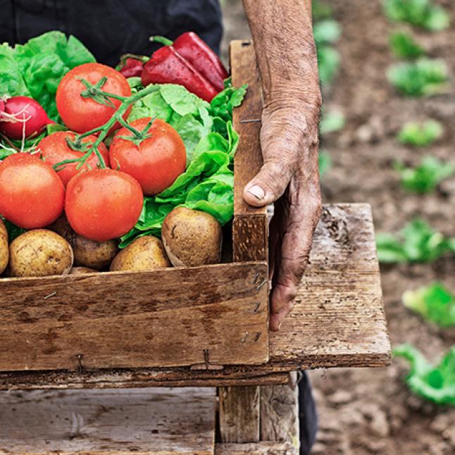Why Organic