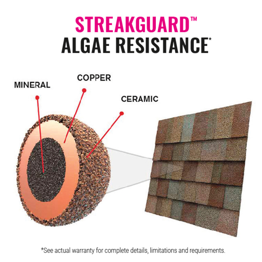 StreakGuard Algae Resistance  Shingle with Granule