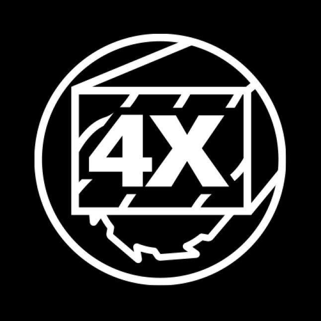 4X icon.