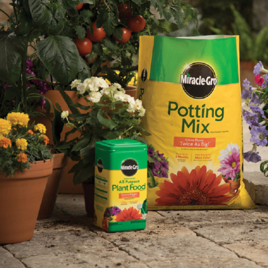 Grow plants with Miracle-Gro Potting Mix and Miracle-Gro Plant Food