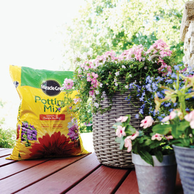 Miracle-Gro Potting Mix bag with container plants