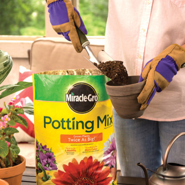 Filling container with Miracle-Gro Potting Mix