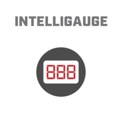 Icon image of Intelligauge