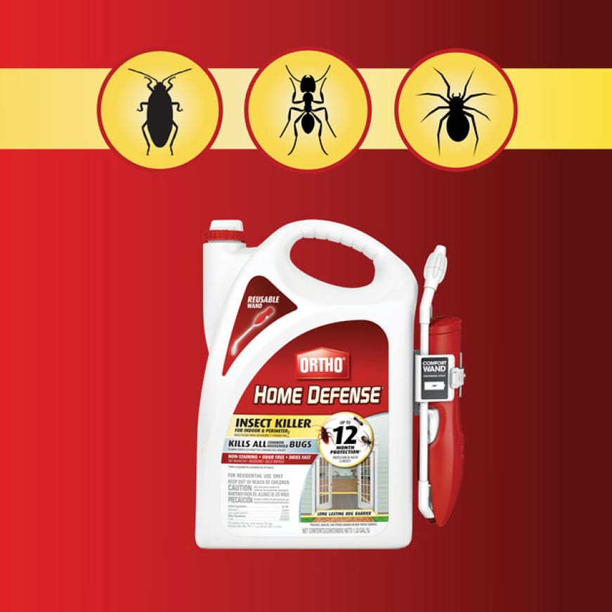 Insect Killer for Indoor & Perimeter