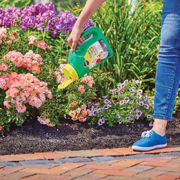 Applying Miracle-Gro Shake 'n Feed All Purpose Plant Food in-ground flower beds